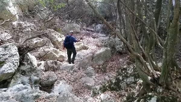 Trifillianika nach Paleochora